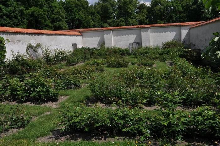 Ogród warzywny przy pałacu w Nieborowie, założony w 1770 roku