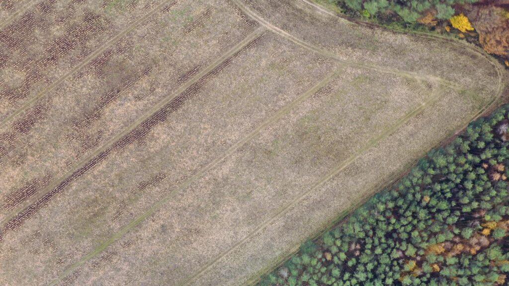 Pomiar szkód łowieckich z drona mapa znaczne szkody